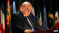 El secretario general de la OEA, José Miguel Insulza
