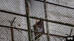 Leopoldo López se asoma por una ventana de su celda en la Prisión Militar de Ramo Verde, desde donde saluda a su esposa, Lilian Tintori, y a su madre, Antonieta Mendoza de López.