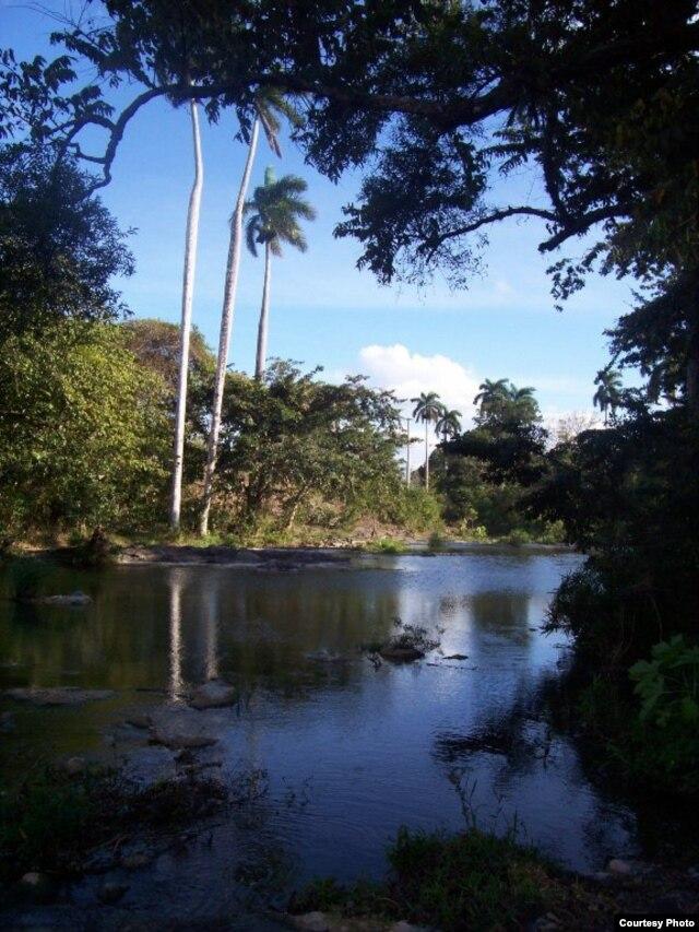 Río Carrasco, Najasa. Camagüey.