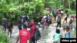 Desde Capurganá, Colombia, migrantes cubanos procedentes de Turbo, incluidos niños, se internan en la Selva del Darién rumbo a Panamá.
