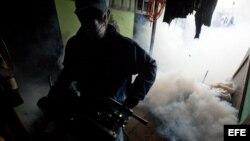 Brigadas del Ministerio de Salud (MINSA) realizan labores de fumigación hoy, viernes 12 de julio de 2013, en un barrio de Managua (Nicaragua). Un reporte de personas afectadas, que fue presentado el jueves por el Ministerio de Salud, indica que hasta el 1