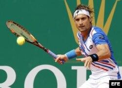 El tenista español David Ferrer.