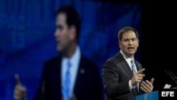 El senador republicano por Florida, Marco Rubio.