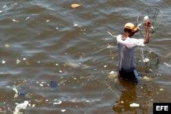 Ignorando la polución de las aguas, un hombre pesca siris (cangrejos) en la Bahía de Guanabara.