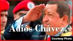 1800 Online con la muerte de Chavez