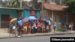 Reporta Cuba. Cola para comprar 12 onzas de pollo. Foto: Martha Bea Ferrer
