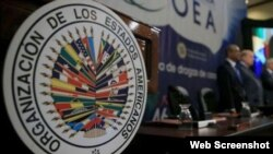 """El embajador de Bolivia en la OEA, Diego Pary, confirmó a la prensa que la reunión sobre Venezuela """"está suspendida""""."""