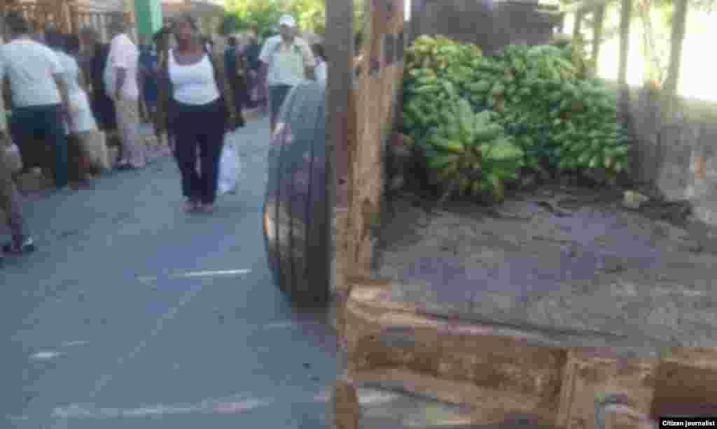 Reporta Cuba Ferias del Agro Guantanano Foto Niover García