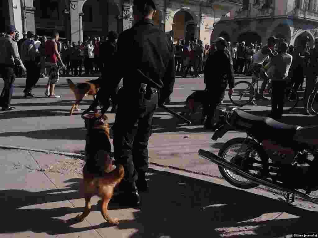 Fotorreportaje de Juliet Michelena Díaz de la Red Cubana de Comunicadores.