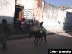 Paseando en poni: la imagen es ahora común en Centro Habana.