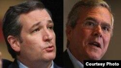 Ted Cruz y Jeb Bush desaprueban, como Marco Rubio, el acercamiento del presidente Obama al gobierno de Raúl Castro.