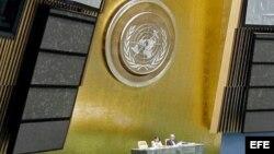 ONU: Investigación por muertes de Payá y Cepero