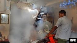 """Un hombre fumiga una vivienda como parte de la campaña contra el mosquito """"Aedes aegipti"""", transmisor del dengue. Foto de archivo"""