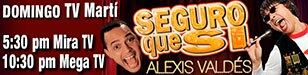 Promo banner - 308 x 75 - Alexis Valdés