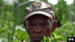 Campesinos cubanos critican la actual estructura de las cooperativas agrícolas