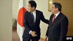 El ministro nipón de Exteriores, Fumio Kishida (izda), recibe a su homólogo cubano Bruno Rodriguez Padilla, antes de su reunión en el Ministerio de Exteriores en Tokio (Japón).